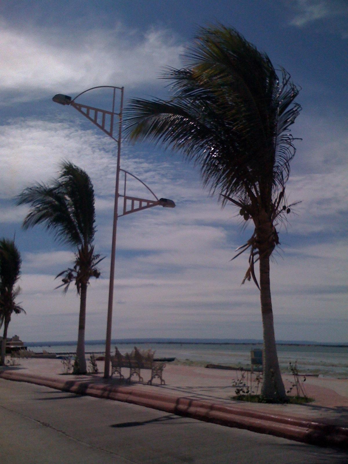 Puerto Vallarta Sports